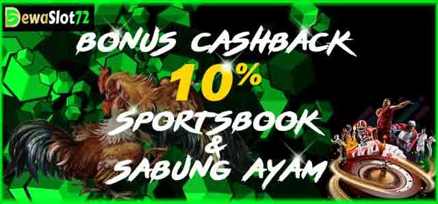 Bonus Cashback Sportsbook dan Sabung Ayam